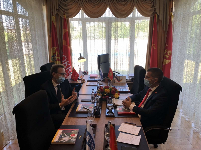 ENEMO Head of Mission met with the leader of the Democratic Montenegro Party